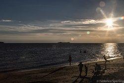 Playa Real de San Carlos