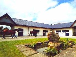 Dunbyrne Equestrian Centre