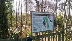 Corton Woods Local Nature Reserve