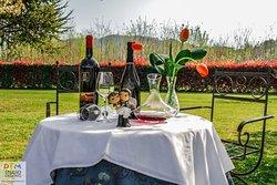 La Cantina del Vino