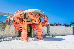 Bavaro Lobster