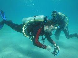 V Dive Club