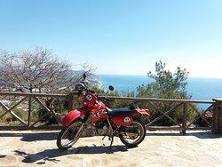 Martin Turkay Rent a Car & Bike