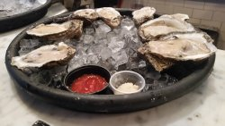 Raw Oysters the size of your Head