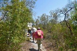 Mound Key Archeological State Park