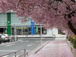 Nirasaki City Chiiki Joho Hasshin Center