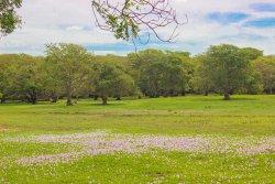 Anawilundawa Wetland Sanctuary