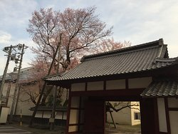 Iida Castle Sakuramarugomon