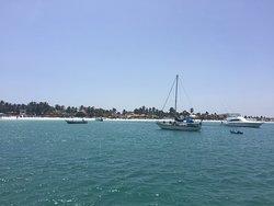 Sunsol Festival Cruise