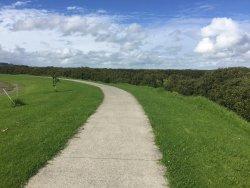Thames Coastal Walkway