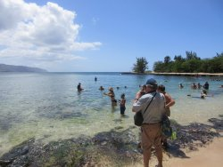 Aloha Circle Island Tours