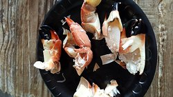 1st time eating stone crabs.