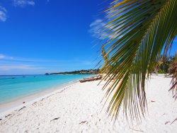 beach  (251036331)