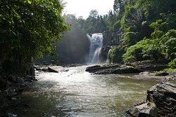 Bali Tours (Ngurah Alun)