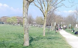 una zona del parco