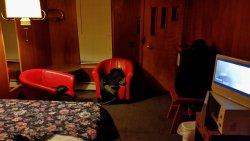 Johnson's Motel
