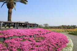 Izumi Recycle Environment Park