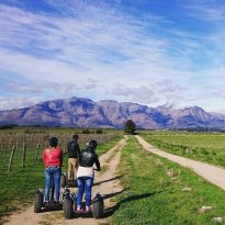 Segway Vineyard Tours