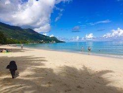 Amazing Personal Paradise