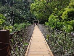 Xiaowulai Sky Walk