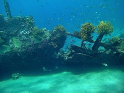 Amed Shipwreck