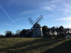 Harris-Black House and Higgins Farm Windmill