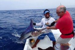Los Reyes Sportfishing Charters