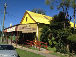 The Yellow Shed