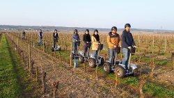 Balades en gyropodes dans les vignes