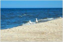 Pobierowo Beach