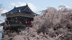 Uedajo Castle