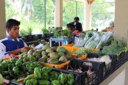 Anse Royal Public Market