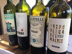 Matias Riccitelli Wines