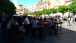 Plaza Del Salvador