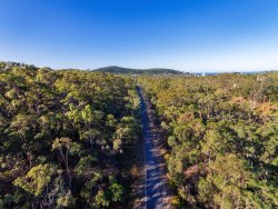 Capricorn Coast Pineapple Rail Trail