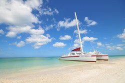 Sweet Liberty Catamaran Sailing & Boat Tours