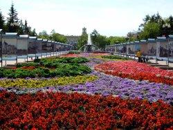 Kirov's Park