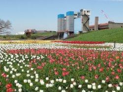 Agricultural Park