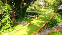 Enchanted Forest Mini Golf