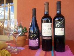 TerraCotta Wine Bistro