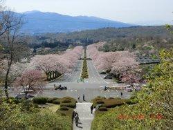 Fuji Reien Cemetry