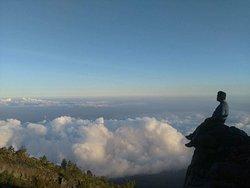 Bali Lovina Tours