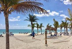 Discovery Cruise Bahamas