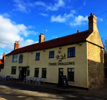 The Three Swallows