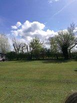 Wombleton Caravan Park