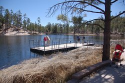 Rose Canyon Lake Campground