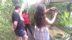 Lovina Bali Transport