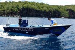 Alpha Plongée Martinique