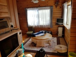 Downstairs living room (4 person cottage)