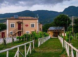 Agrihouse CA' Del Conte
